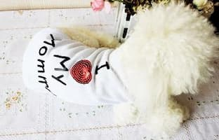 t-shirt love pour chien