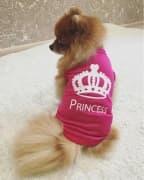 t-shirt de princesse pour femelle