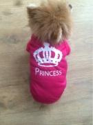 chienne en t-shirt de princesse
