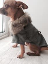 manteau contre le froid pour chien