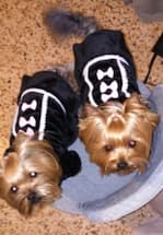 manteau chaud pour hiver chien