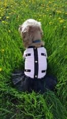manteau style marin pour chienne