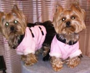 york habillé en manteau uniforme rose