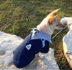 pull avec fausse chemise pour chien