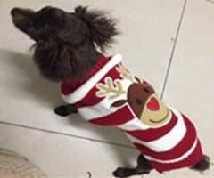 tricot de noel pour petit chien