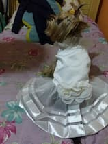 habit de mariée pour femelle