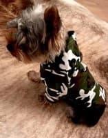 pull camouflage à capuche pour chien