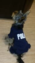 combinaison 4 pattes police pour chien