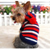 Pull chandail bleu et rouge rayé pour chien