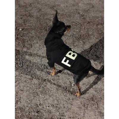 pull à capuche imprimé FBI pour chien