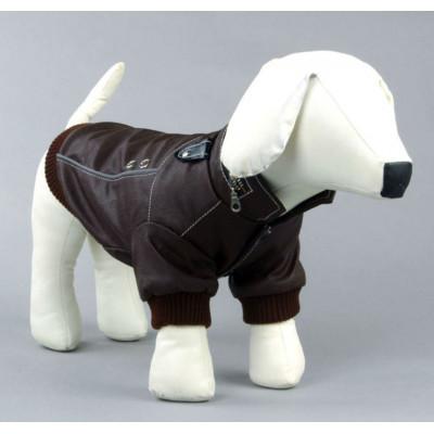 Manteau branché pour petit chien