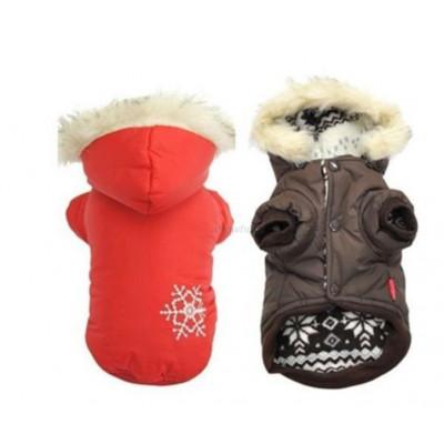 manteau hiver chien