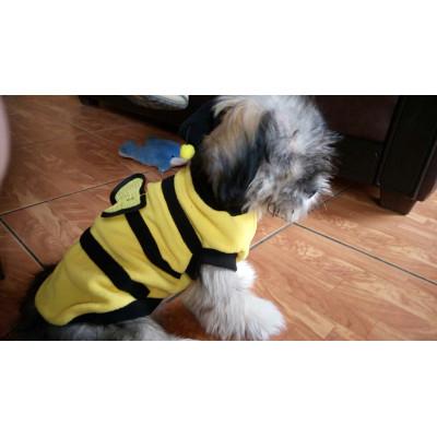 déguisement d'abeille pour petit chien