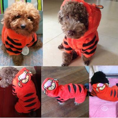 chien déguisé en tigre