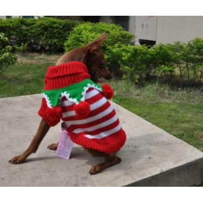 chien habillé en lutin