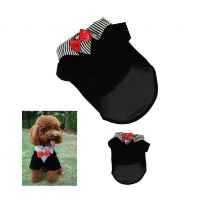 Costume au col chemise rayée pour chien