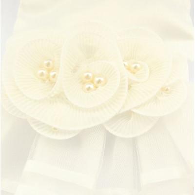 Robe de cérémonie pour femelle