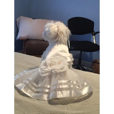 robe de mariage pour femelle