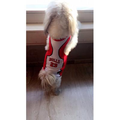 Maillot de basketball pour chien