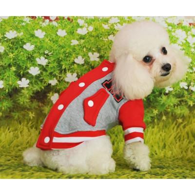 Veste de sport pour petit chien