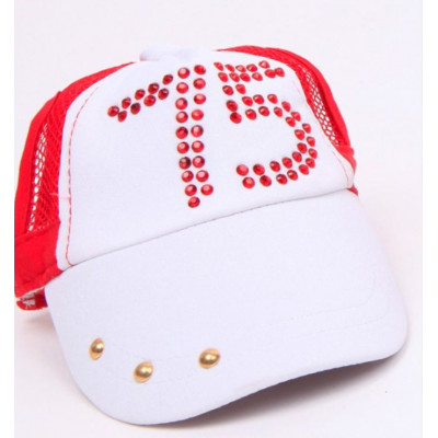 Casquette rouge style baseball pour chien