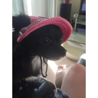 Chapeau pour femelle