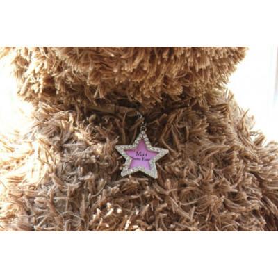 Pendentif étoile pour petit chien