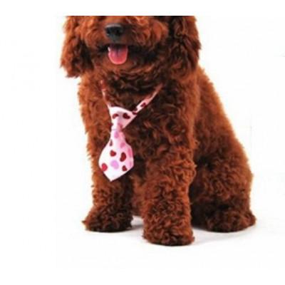 Cravate avec coeurs pour chien