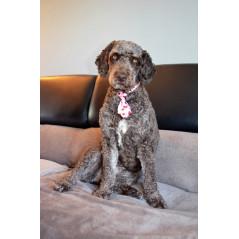 Manteau marron col ZIP pour chien