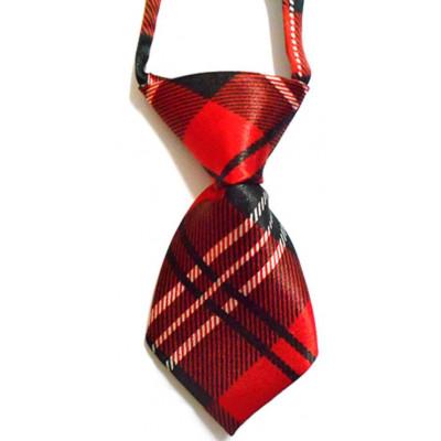Cravate rouge écossaise pour chien