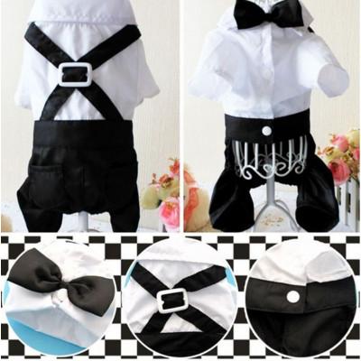 Chemise blanche et pantalon noir à bretelles pour chien