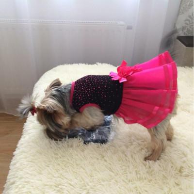 Robe rose à fleurs pour chien