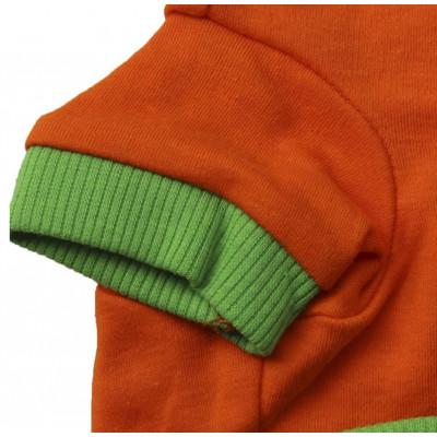 t-shirt orange de fête d'halloween pour chien