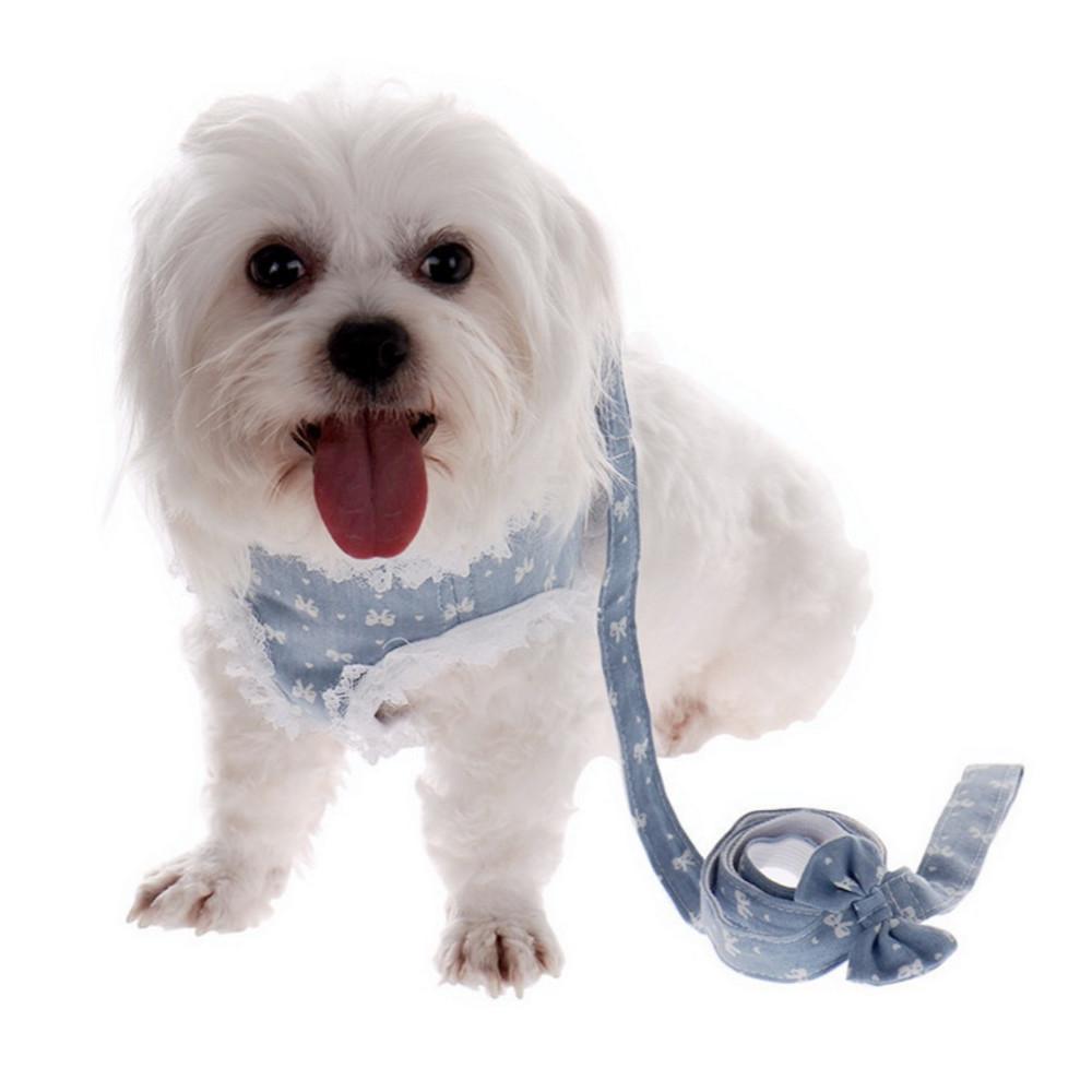 Harnais avec dentelle pour chien