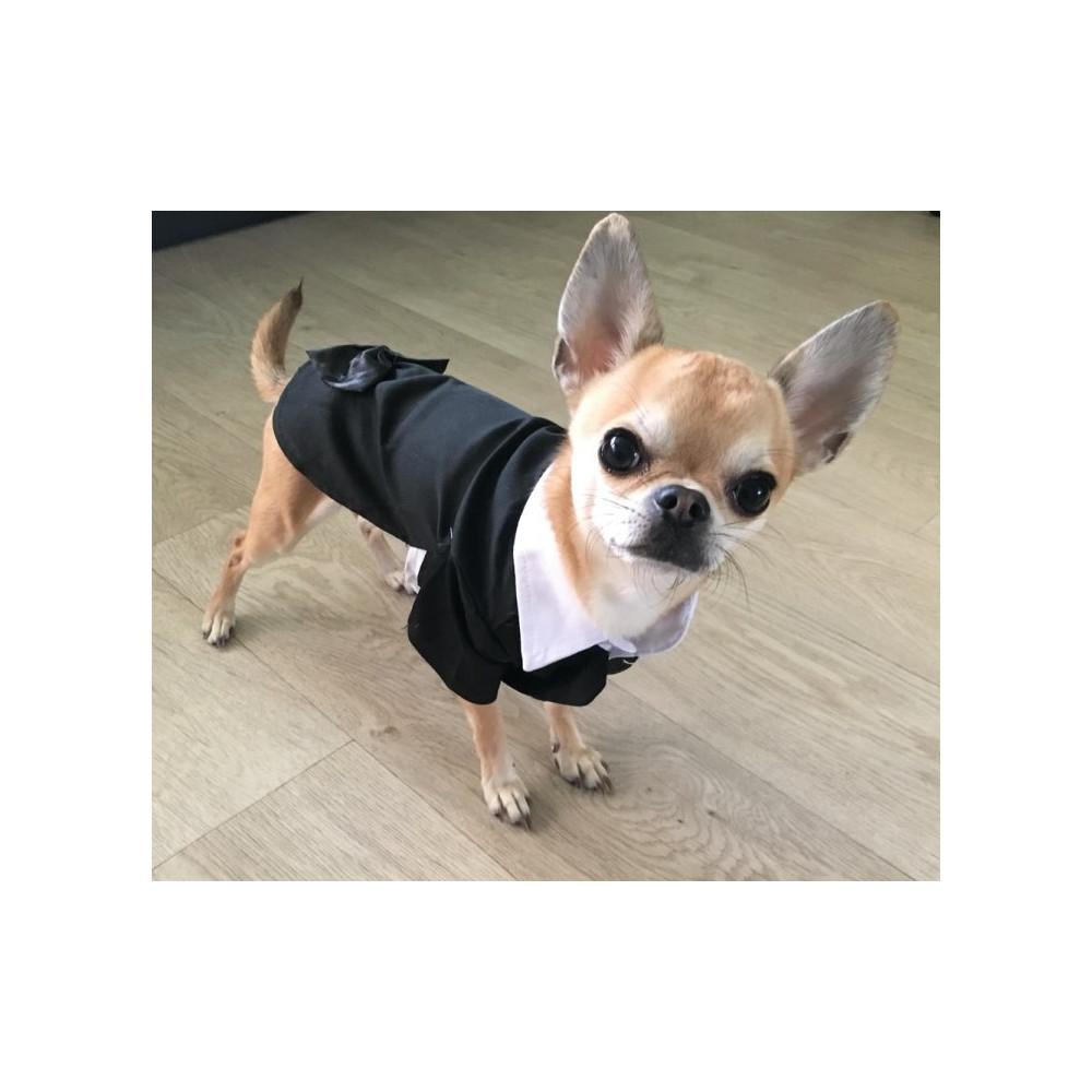 Costume chic pour chien