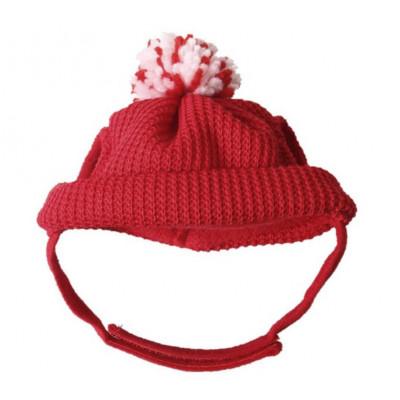 Bonnet hiver pour chihuahua