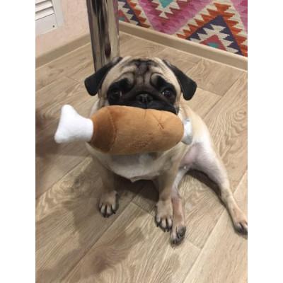 Jouet poulet pour chien
