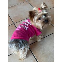 t-shirt pour petit chien
