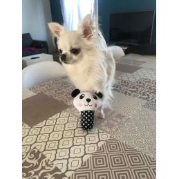peluche panda sonore pour petit chien