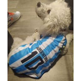 maillot Messi football pour chien