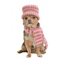 Echarpes et bonnets pour chien- accessoires contre le froid