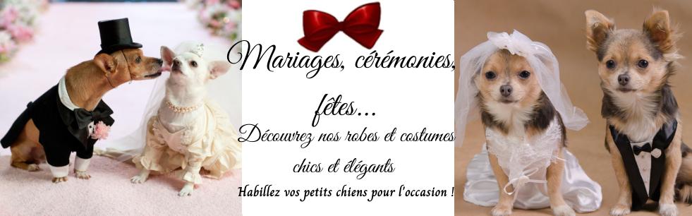 costumes et robes de mariage pour chien